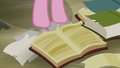 A book with a torn page S5E8.png