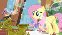 Fluttershy and Breezies looking at Seabreeze S4E16