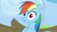 Rainbow Dash wakes up from her nap S7E7