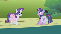 Twilight encounters Rarity in the road S1E10