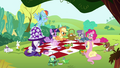 Mane 6, Maud and the pets together in a picnic S4E18.png