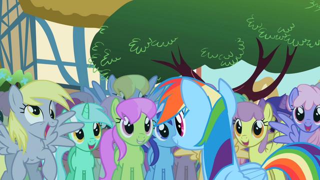 File:Derpy Rainbow Dash 3 S2E08.png