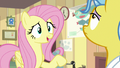 "Fluttershy ""don't be silly, Dr. Fauna"" S7E5.png"