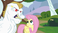 Fluttershy looking at Bulk Biceps S4E10.png