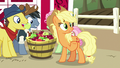 "Applejack ""friends are like family and whatnot"" S7E14.png"