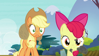 "Applejack ""what in tarnation are you doin'?!"" S5E4"