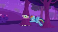 Rainbow Dash pushing Fluttershy S2E22