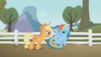 Rainbow and Applejack glaring at each other S1E3