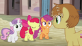 "Apple Bloom ""the Cutie Mark Crusaders are..."" S7E8.png"