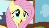 """Fluttershy """"I love Furry Friends Book Club!"""" S5E23"""