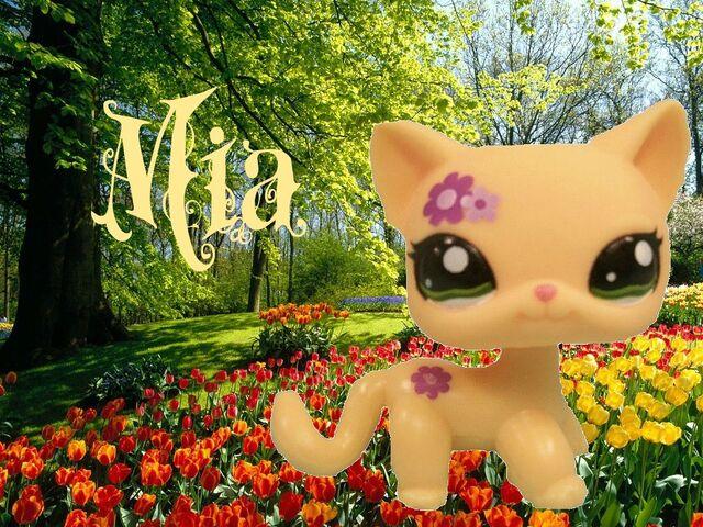 File:Mia.jpg