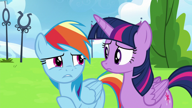 """File:Rainbow Dash """"when I was watching Sky"""" S6E24.png"""