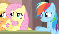 Fluttershy and Rainbow Dash confused S5E1