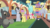 Ponyville teams cheering S4E24