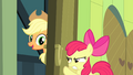 Apple Bloom tries to close the door S4E17.png
