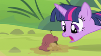 Twilight's mouth agape S4E7