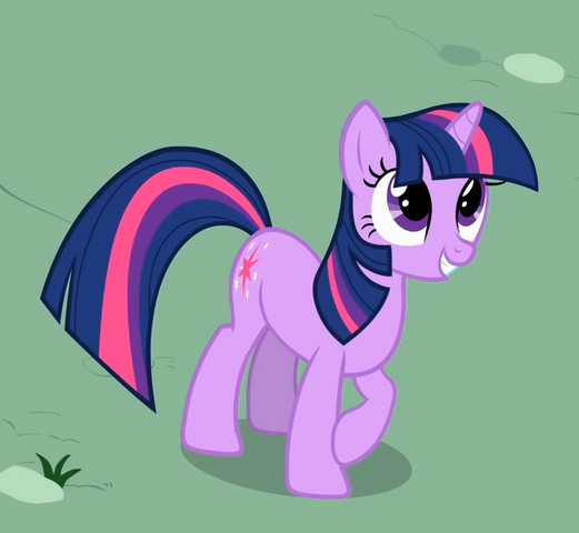 File:Twilight to Zecora's cropped S1E17.png