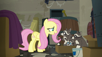 """Fluttershy """"I'd like you all to stay here"""" S6E9"""