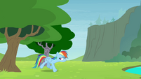 Rainbow walking out from behind the tree S4E10