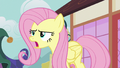 Fluttershy stands up to the pony crowd S7E14.png