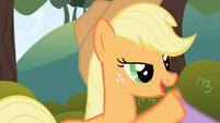 Applejack introduces herself S1E01
