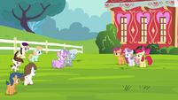 Diamond Tiara, Silver Spoon and other foals walking towards CMC S4E15