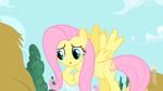 Fluttershy rubbing her hooves S1E17