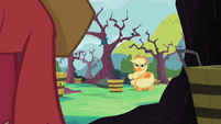 First sign of zap apples Applejack and Big McIntosh S2E12