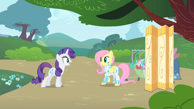 File:Rarity inspects Fluttershy's outfit 2 S1E20.png