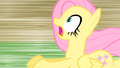 Fluttershy gasp S01E22.png