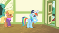 Rainbow Dash calming herself down S4E05.png