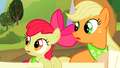 Applejack and Apple Bloom look to their side S2E05.png