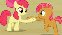 Babs and Apple Bloom S3E08