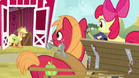 Big Mac and Apple Bloom looking at AJ S4E09