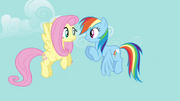 Rainbow Dash 'you gotta be excited!' S4E04.png
