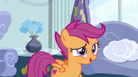 "Scootaloo ""ideas of my own"" S6E14"