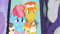 Mr. & Mrs. Cake perhaps Rarity S2E13.png