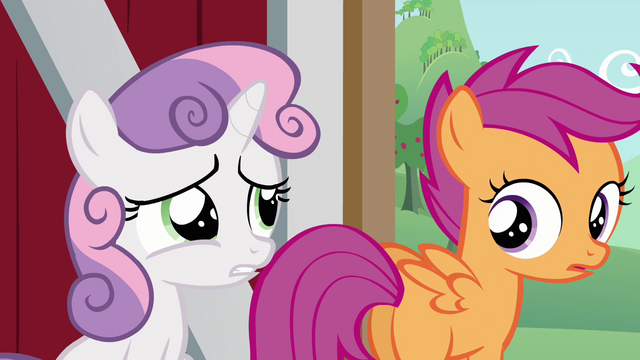 File:Sweetie Belle saying they should go to Applejack S3E4.png