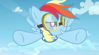 Rainbow Dash I'm in S3E7