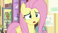"""Fluttershy """"do you suppose it's my fault?"""" S7E5.png"""