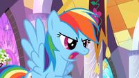 Rainbow Dash defends the princess S2E01