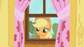 Applejack staring through window 2 S01E18.png