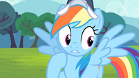 Rainbow Dash controls herself S4E05