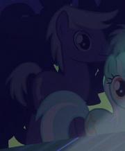 Silver Script Earth pony ID S5E24
