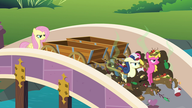 File:Sweetie Drops and Cherry Berry are covered in trash S2E19.png