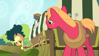 Big Mac listening to Applejack talking S4E17