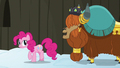 """Prince Rutherford """"yak not mad at pink pony"""" S7E11.png"""