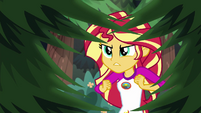 Sunset Shimmer fails to catch Timber in the act EG4