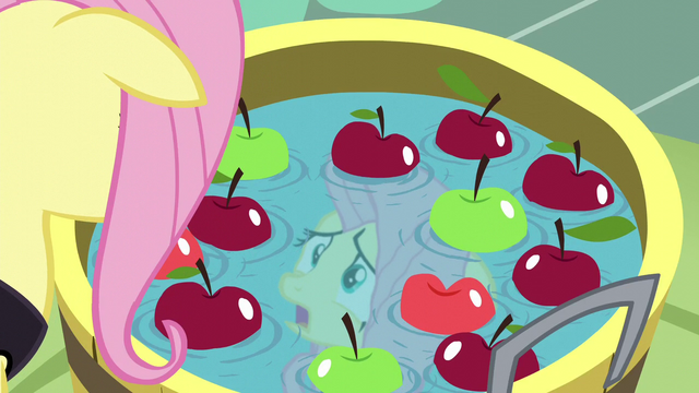 File:Fluttershy looks at her water reflection S5E21.png
