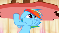 Rainbow Dash holding up column 2 S2E14